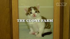 Thumbnail of Clone Animals