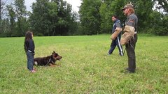 Thumbnail of A 5 Year Old Girl Getting Protected By Her German Shepherd