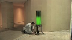 Thumbnail of Algae Lamp