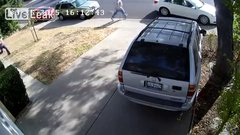 Thumbnail of Package Thief Loses More Than He gained