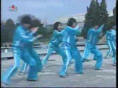 Thumbnail of Cheeky North Koreans win Euros