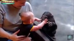 Thumbnail of Kids and Zoo Animals