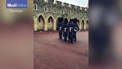 Thumbnail of Coldstream Guards make a little lads birthday something really special!
