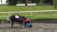 Thumbnail of Gentle Pony Helps Girl Who Falls Off After Fence Jump