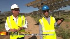 Thumbnail of California solar power plants ignite birds mid-flight