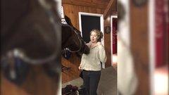Thumbnail of Horse like zipper