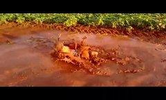 Thumbnail of Playing dirty!