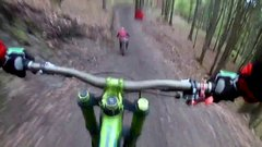 Thumbnail of Bear on the bikepark in Slovakia