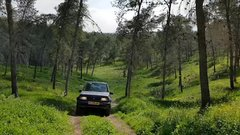 Thumbnail of Buy my Vitara