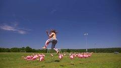 Thumbnail of Jujimufu Flamingo Kick