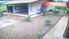 Thumbnail of World's Worst Burglar Breaks Into OPEN Garage