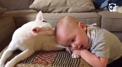 Thumbnail of Baby and the Cat