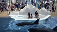 Thumbnail of Science Rocks! 7D Park in Japan. You can touch, feel and even smell the animals