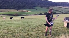 Thumbnail of Guy in New Zealand playing guitar for cows