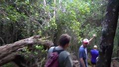 Thumbnail of Why Hawaii's volcano is so UNUSUAL