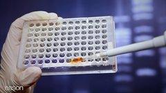 Thumbnail of Junk Science Locks Up Innocent People