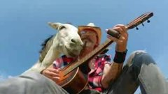 Thumbnail of Rescue donkey smiles as music is played to her.