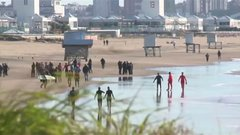 Thumbnail of Beached orcas saved along Argentine coast