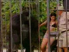 Thumbnail of Monkey Suit