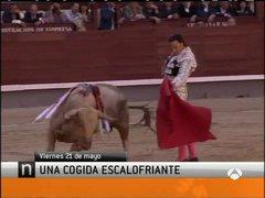 Thumbnail of Spanish bullfighter gored