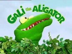 Thumbnail of Gali the Alligator