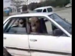 Thumbnail of 2 camels in a tiny car
