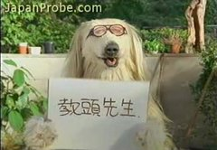 Thumbnail of Bizarre Japanese potato chip commercial